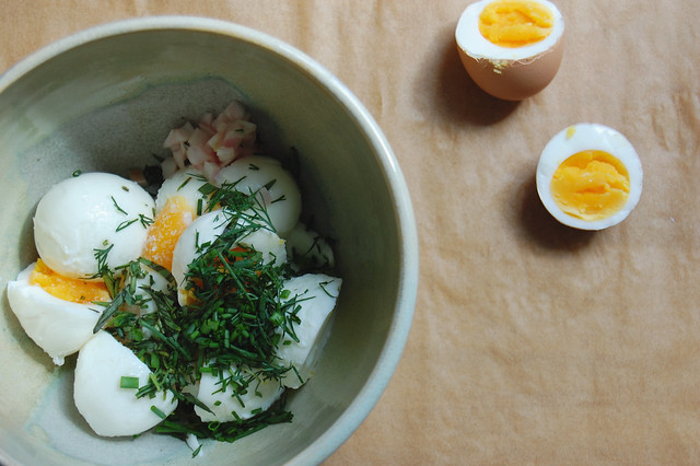 hard-boiled eggs with fresh herbs in bowl