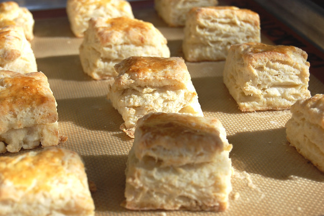 buttermilk biscuits on silpat baking sheet