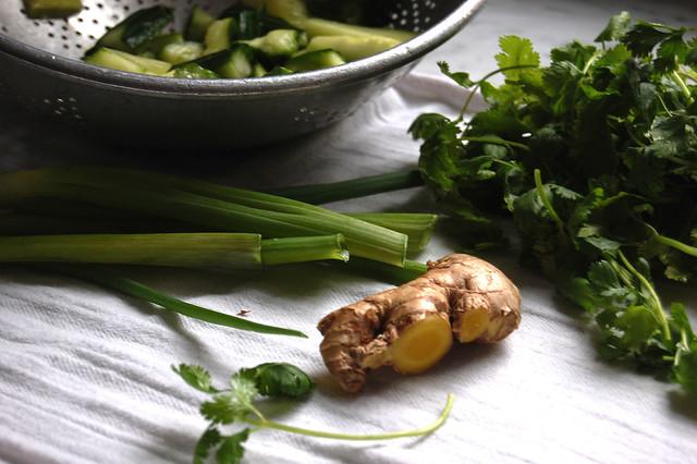 cilantro scallions ginger