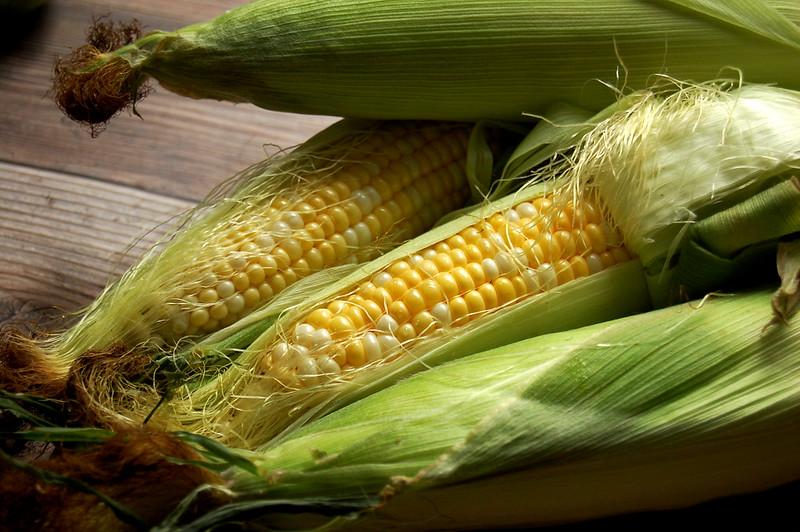 shucked ears of corn on wood