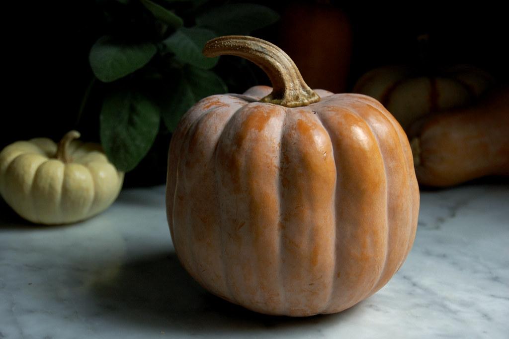 7 Great Pumpkin and Winter Squash Recipes