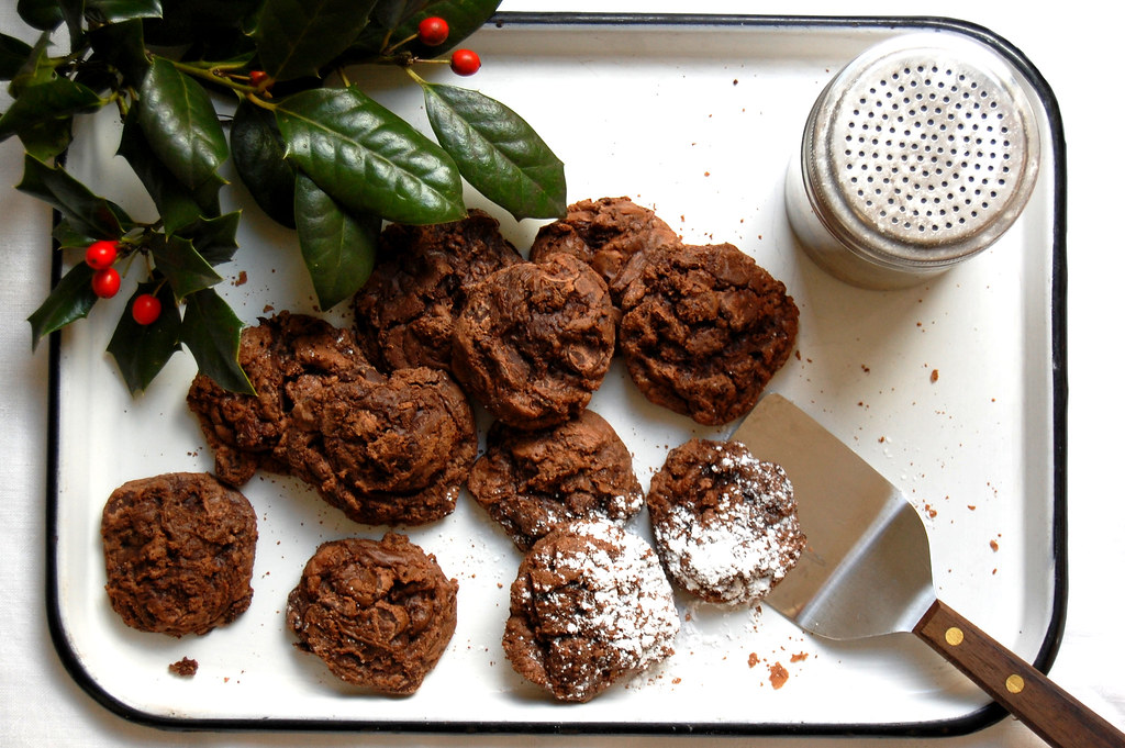 Fudgy Double Chocolate Cookies